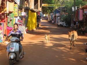 Arambol Beach Road, Goa