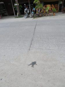 Flat frog, Srithanu