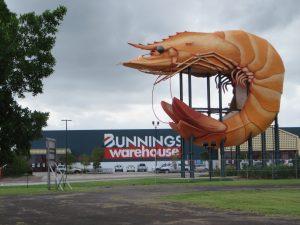 Big Prawn Ballina Australia