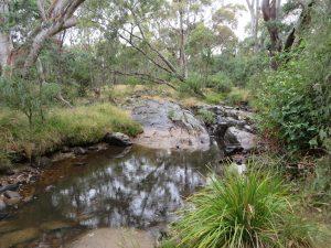 Creek Australia